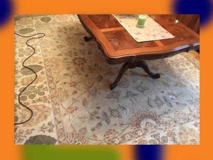 Nettoyage de tapis d'Orient à domicile Paris 75017